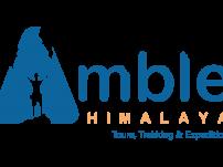 Blue_Amble_LOGO(Big-Size)
